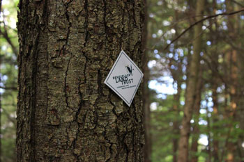 Contact Page TrailMarker TrixN