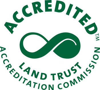 accredited LTA Logo green